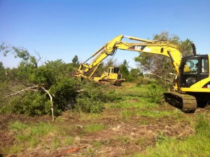 Denton Land Clearing